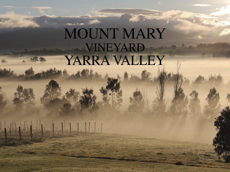 Mount Mary – Winery of the Year
